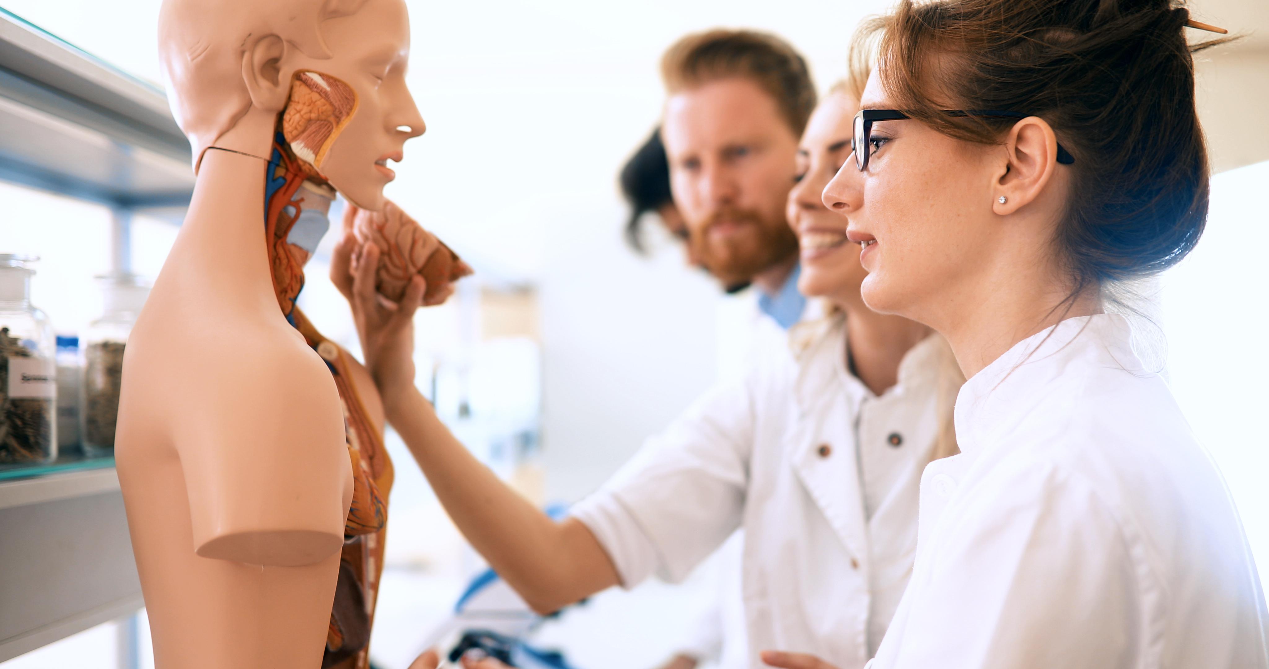 Online-Eingangsprüfungen für das Medizinstudium im Ausland: Wilkommen an der Universität Szeged am 27. Mai und 6. Juli 2020